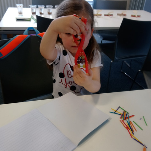 Exploring DNA structure.jpg