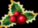 Transparent_Christmas_Mistletoe_PNG_Pict