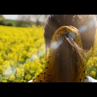 A short film - The feeling of summer