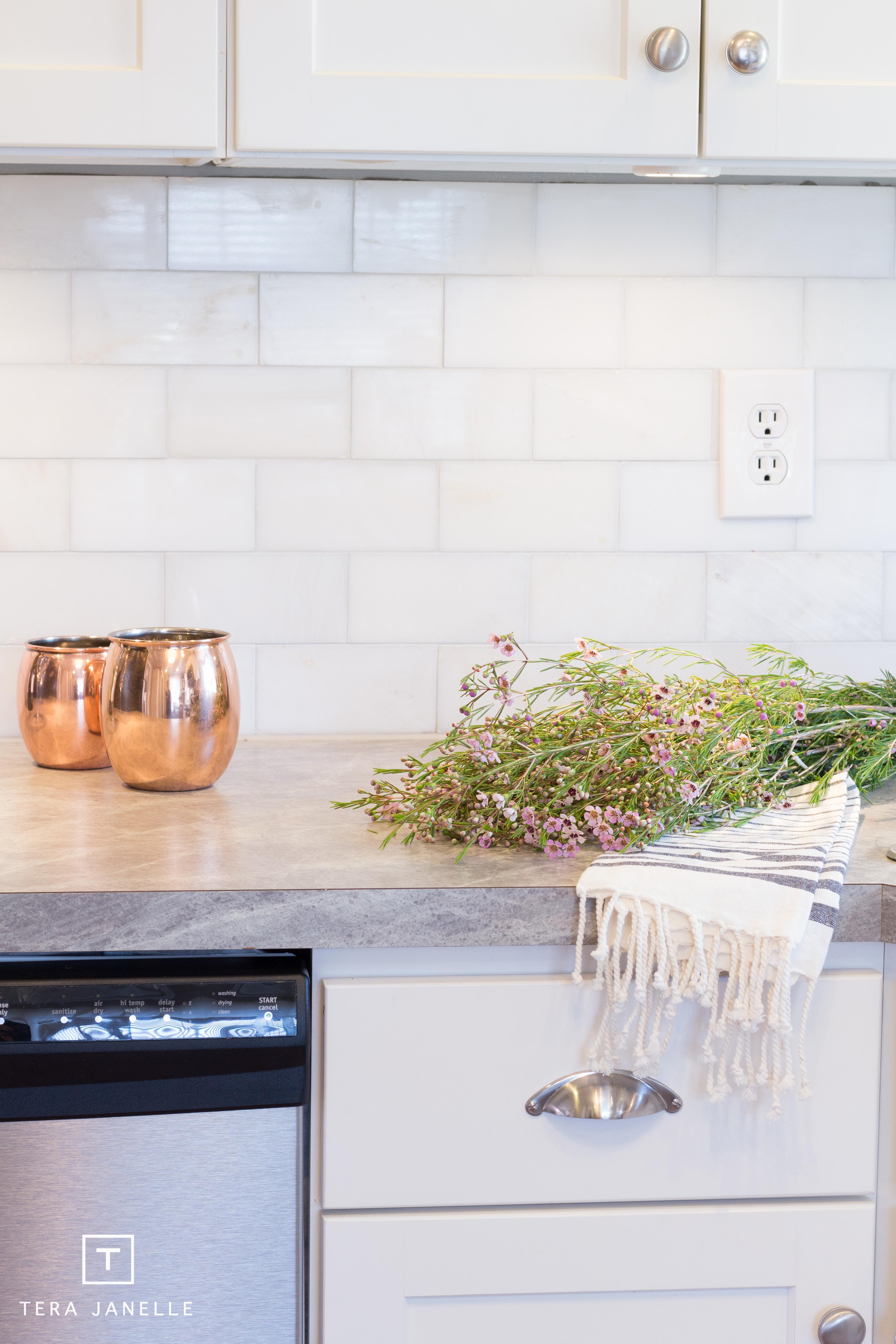 Domino - Formica Kitchen - Tera Janelle Design-14.jpg