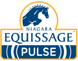 Donation from Equissage Pulse UK