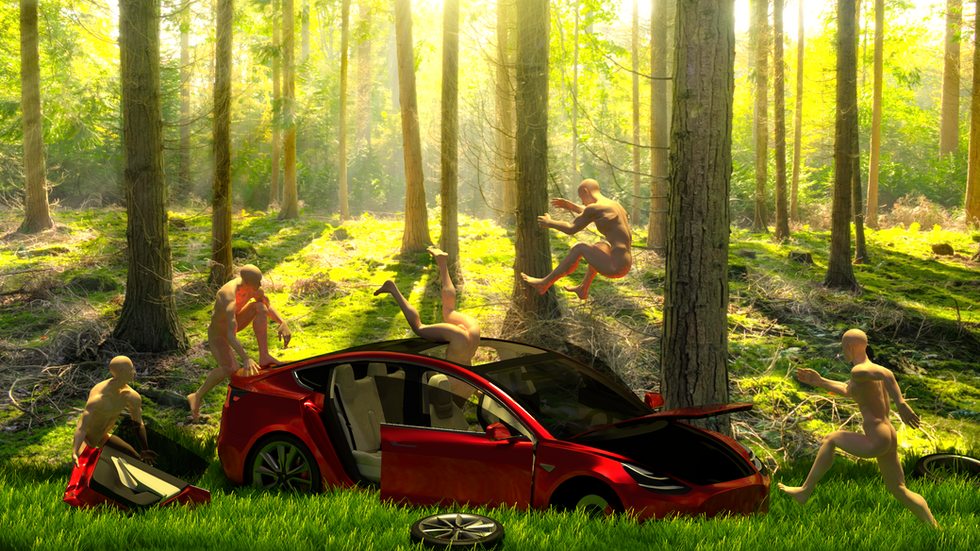 nature and tesla model 3.png