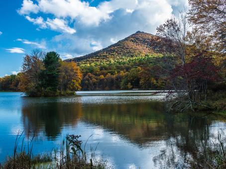 Ten outdoor activities you must explore in the Lynchburg Region this summer