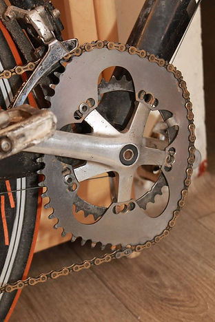 Non-circular chainrings, what is Raval Bike