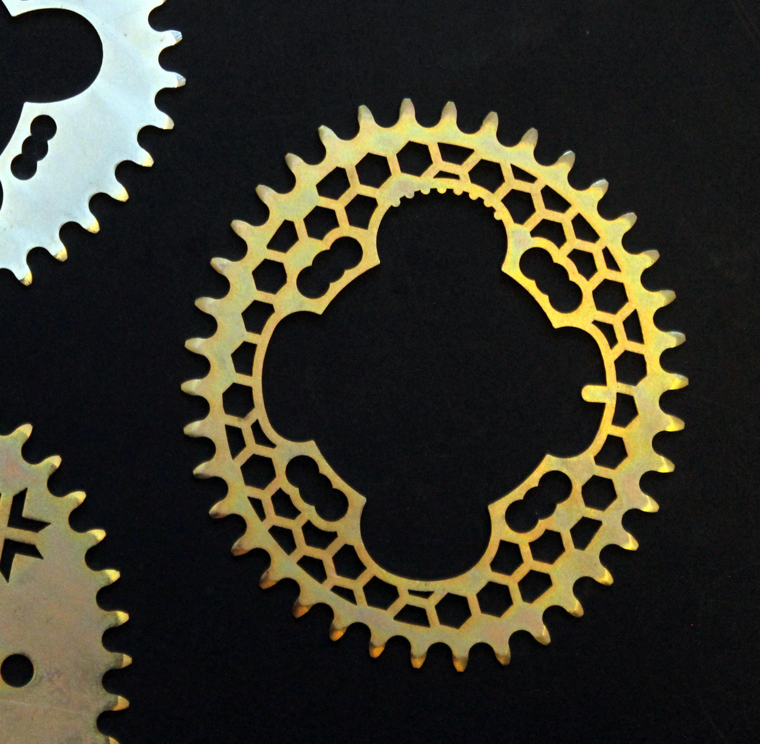 oval chainring, Raval Bike