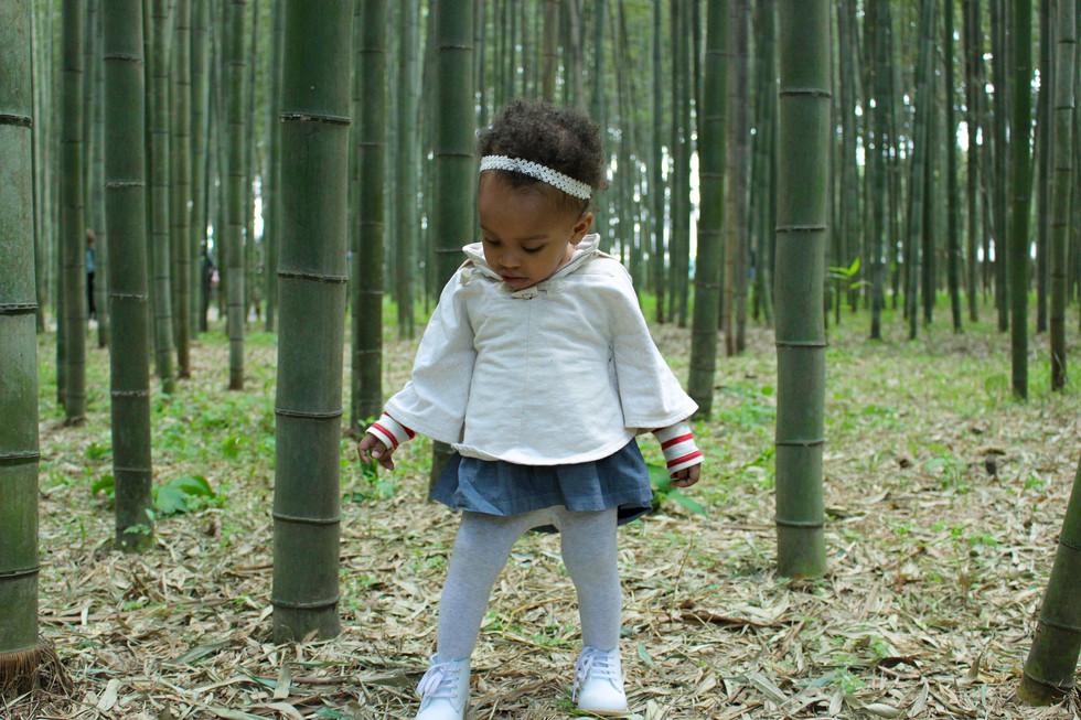 17 Photos to Inspire Kyoto, Japan Travel!