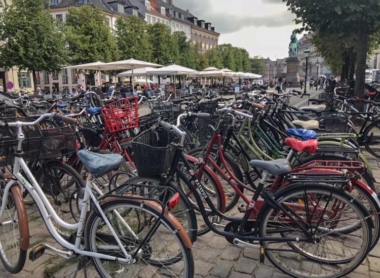 Bike Around the City