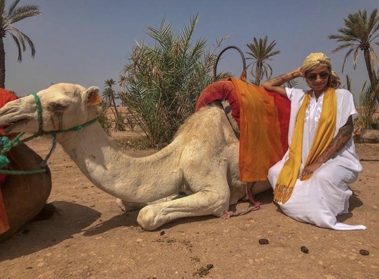 Palm Grove Camel ride
