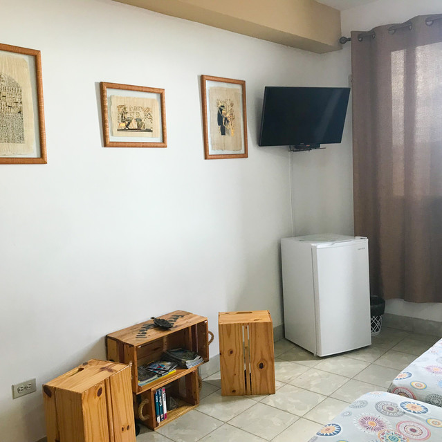 Tv and Refrigerator in room