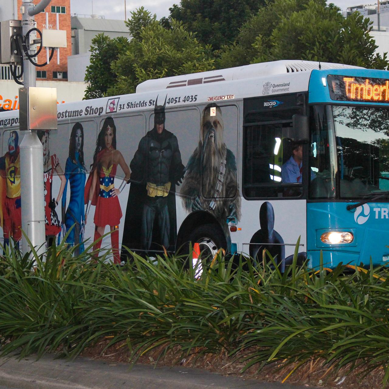 Cairns Public bus