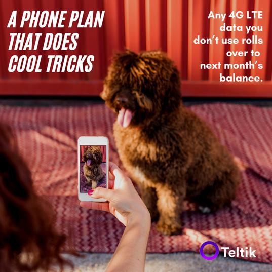 Phonenomenal Phone Plan