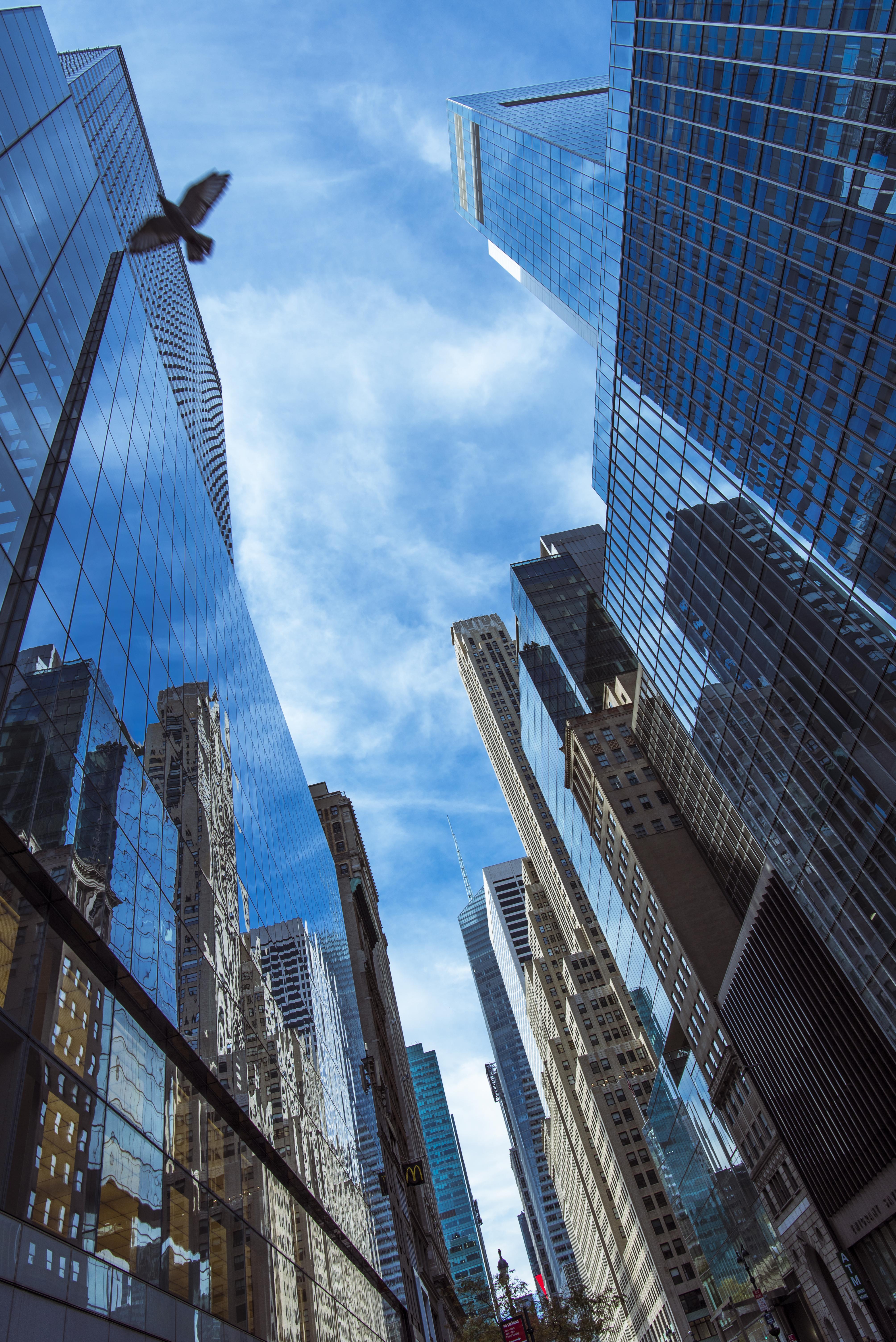 Lower Manhattan, NYC, NY