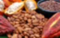 Cocoa Chocolate Frozen Yogurt Dessert Bongo Froyo Mammoth Lakes
