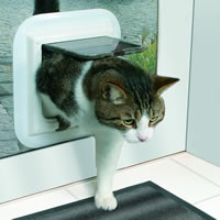 Why Should You Have Your Cat Flap Installed In the Glass?