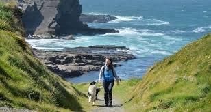 Walking the dog.jpg