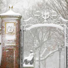Snow Blizzard of Notices