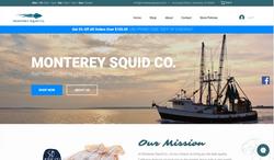 monterey squid portfolio