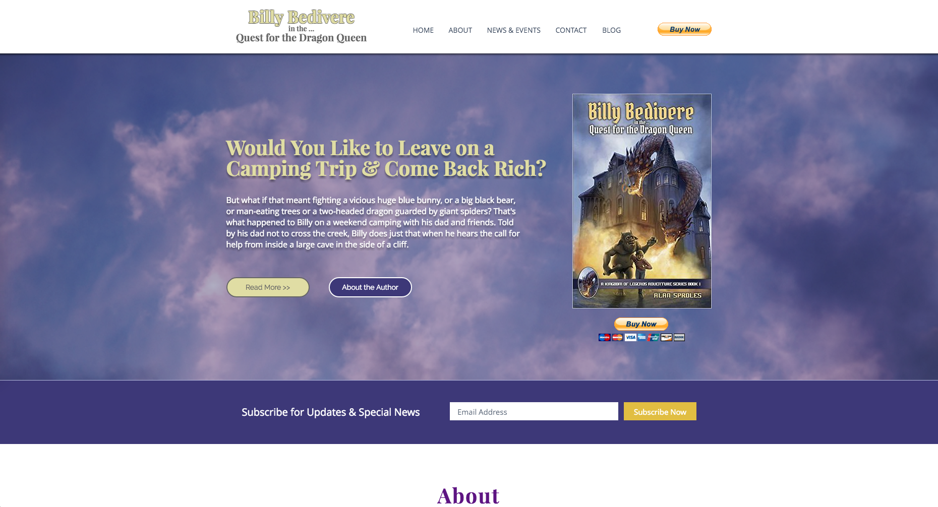 billy bedivere portfolio