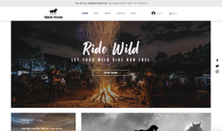 blackhorse portfolio