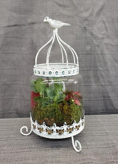 """Bird Cage  12"""" Terrarium"""