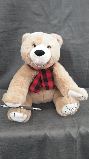 Teddy Bear Dressed for the Cold