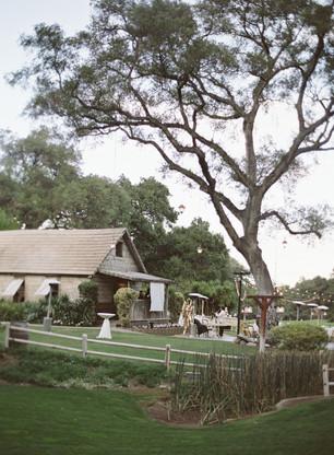Stonehouse婚礼47.jpg