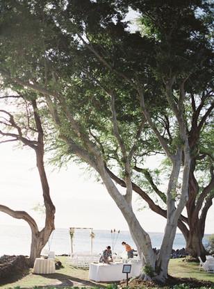 夏威夷婚礼6.jpg