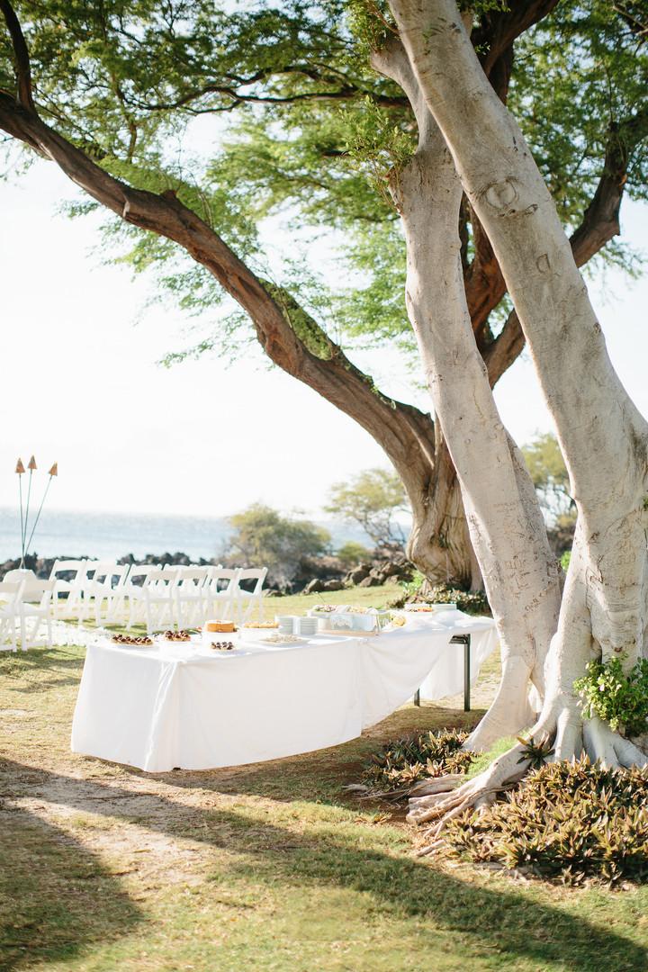 夏威夷婚礼78.jpg