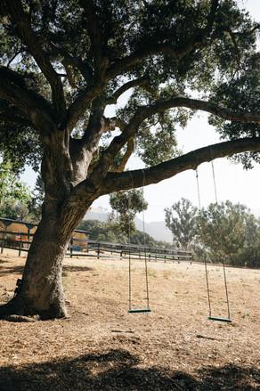 洛杉矶婚礼airbnb1.jpg
