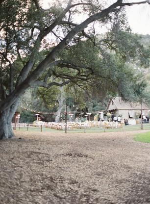 Stonehouse婚礼42.jpg