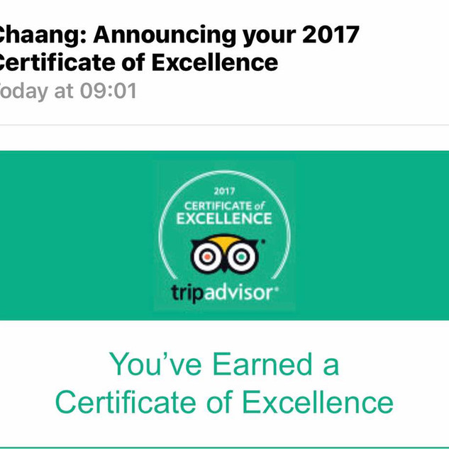 Chaang Trip Advisor Rating.jpg