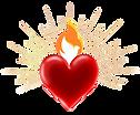 FOL logo ws(002).png