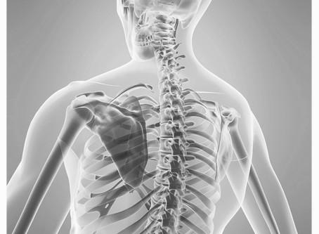 Il midollo spinale si muove?