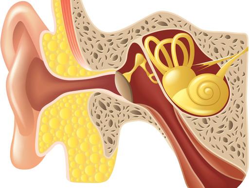 Osteopatia e Otiti: Perché i bambini sviluppano otiti ricorrenti e croniche? Proposta di trattamento