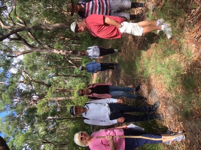 bushwalk alan strom lookout1