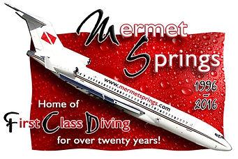 Mermet Springs logo.JPG