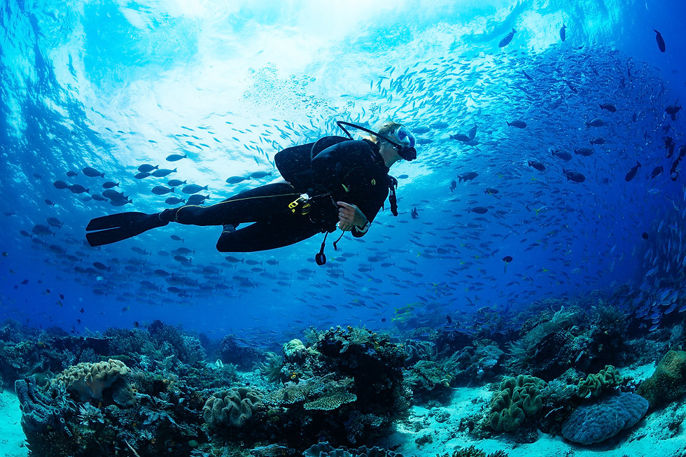 Girl scuba diver diving on tropical reef