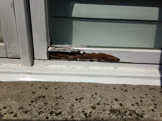 Wood windows some times need a patch up to stop the rotting of the wood. Temporary solution.