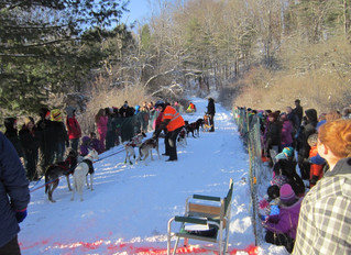 2018 Jim Lobdell Memorial Sled Dog Races and IWPA Canine Weight Pull Results