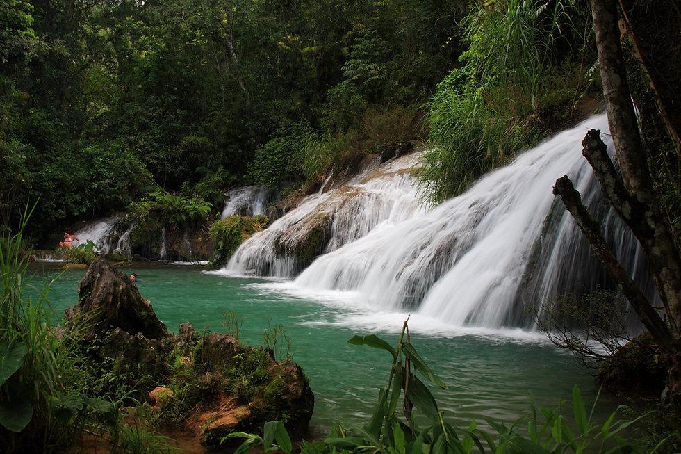 Wasserfälle im Wald