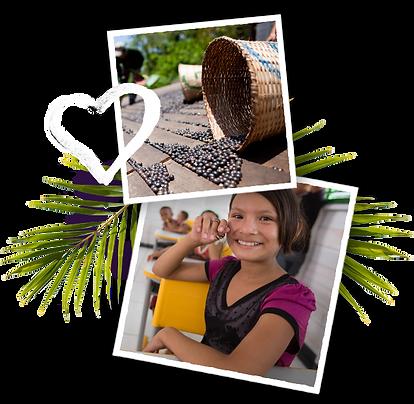 fair-trade-right-d.png