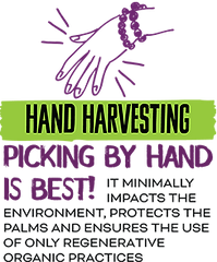 hand-harvesting.png