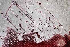BPA: Is it worth the paper it's spattered on - Jo Millington