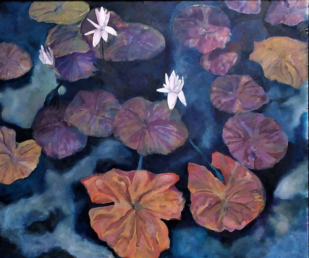 """Carroll Creek Water Lillies"""