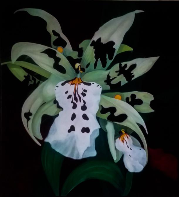 """Night Orchid"""