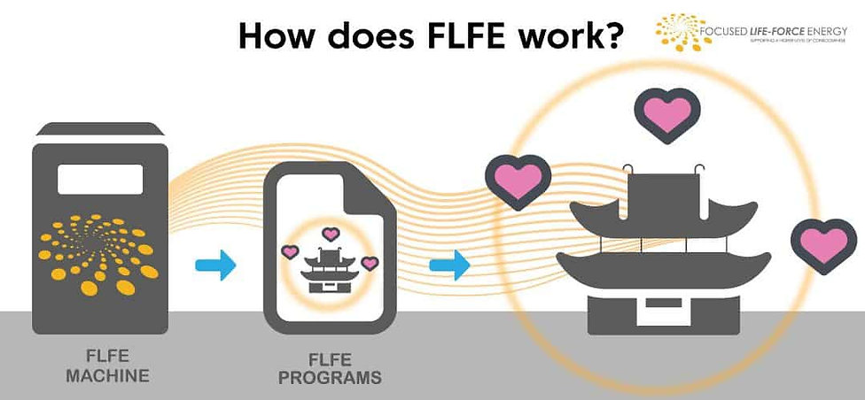 How FLFE Works.jpg
