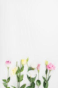 "row-of-beautiful-flowers-on-white-backgr<meta name=""keywords"" content=""healing treatments, alternative medicine, healing energy, emotion code, body code, energy healing, Quantum Physics, energy""/>Dr Bradley Nelson, Body Code, Emotion Code, Emotion Code Practitioner, Body Code Practitioner, Certified Body Code Practitioner, Certified Body Code Practitioner, Energy Healer, Addiction, Morning Sickness, Depression, Knee Pain, Kidney Pain, Kidney Illness, Alzheimer's treatment, Stored emotions, Chronic pain, insomnia, Chronic fatique, entities, negative entities, Abundance, ascension, higher vibration, higher frequency, healing, Quantum Healing, Native American Healing, Shaman, Egyptians, Sumerians, Assyrians, negative loops"