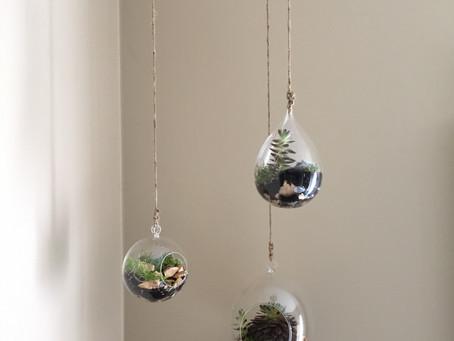 Hanging Terrarium Tutorial
