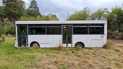 bus website.jpg