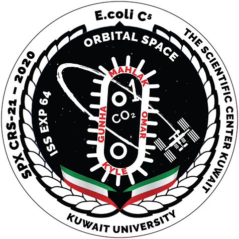 Kuwait's Experiment in Space Mission Patch Orbital Space